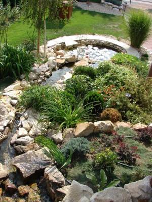 Élővíz a kertben